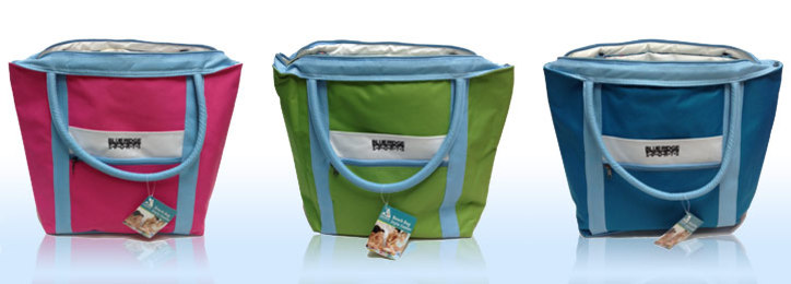 Beach Bag Style Cooler daily deals and coupons from Deals Extra