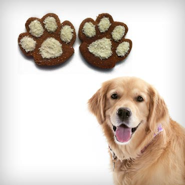 Pawsitively-homemade-holiday-dog-treats-med-1