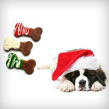 Pawsitively-homemade-holiday-dog-treats-med-2