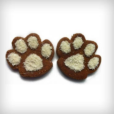 Pawsitively-homemade-holiday-dog-treats-med